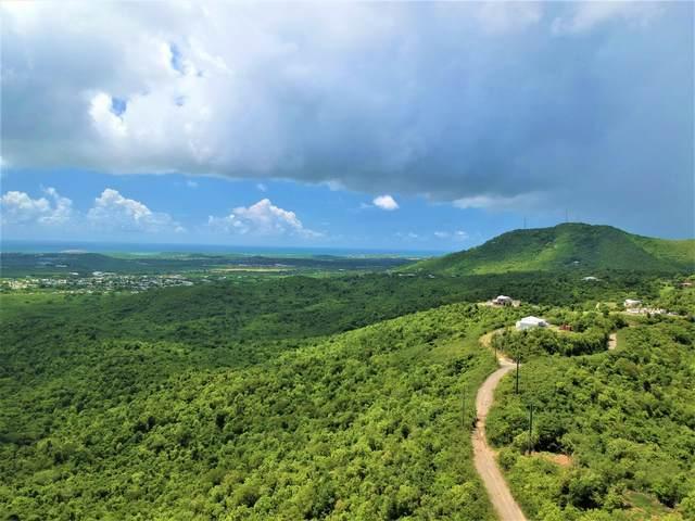 REM 7 Bonne Esperance Nb, St. Croix, VI 00820 (MLS #21-1314) :: The Boulger Team @ Calabash Real Estate