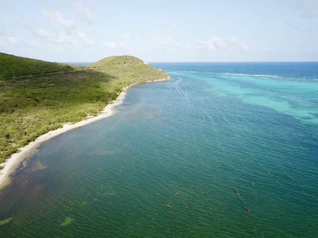 6-A Great Pond Ea, St. Croix, VI 00820 (MLS #21-1315) :: Hanley Team | Farchette & Hanley Real Estate