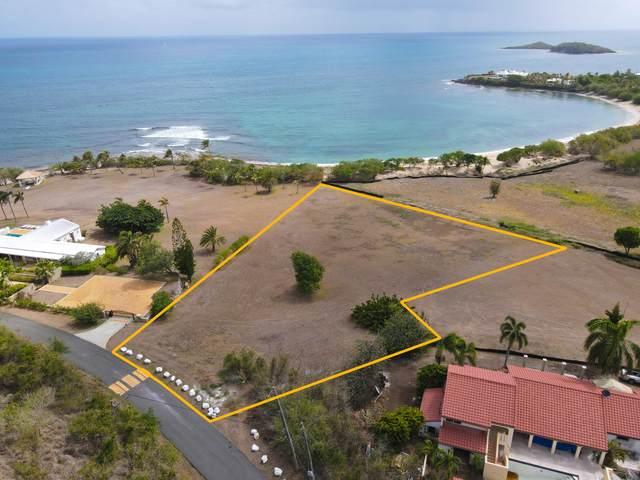 15 Shoys (The) Ea, St. Croix, VI 00820 (MLS #21-1329) :: Hanley Team | Farchette & Hanley Real Estate