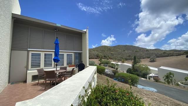 119 Teagues Bay Eb, St. Croix, VI 00820 (MLS #21-1332) :: Hanley Team | Farchette & Hanley Real Estate
