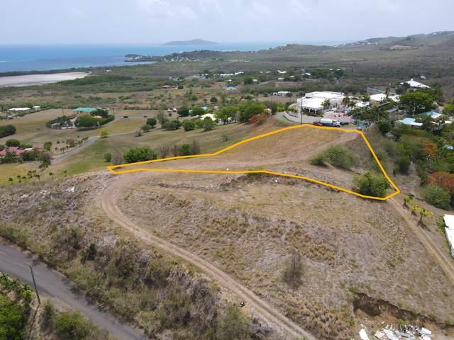 8 Southgate Farm Ea, St. Croix, VI 00820 (MLS #21-1349) :: Hanley Team | Farchette & Hanley Real Estate