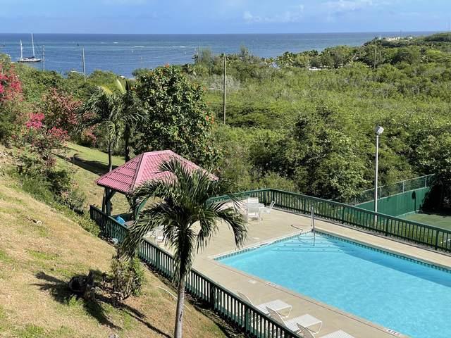239 Mt. Welcome Ea, St. Croix, VI 00820 (MLS #21-1356) :: Hanley Team | Farchette & Hanley Real Estate