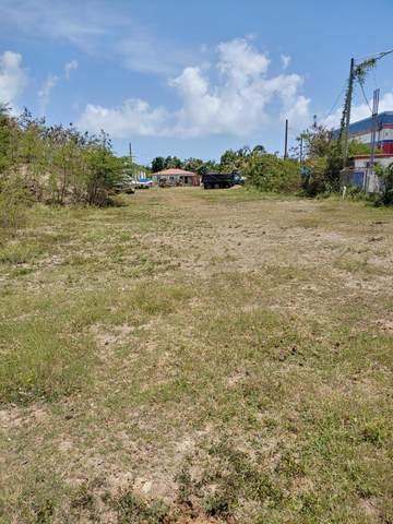 351 Mt. Pleasant Pr, St. Croix, VI 00840 (MLS #21-1372) :: Hanley Team   Farchette & Hanley Real Estate