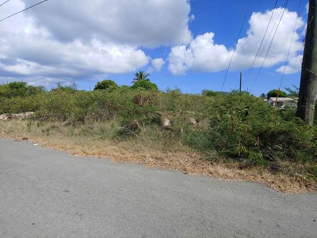 277 William's De Pr, St. Croix, VI 00840 (MLS #21-1373) :: Hanley Team   Farchette & Hanley Real Estate