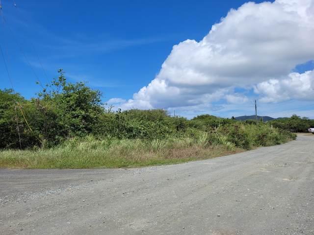 295 Enfield Green Pr, St. Croix, VI 00840 (MLS #21-1382) :: Hanley Team   Farchette & Hanley Real Estate