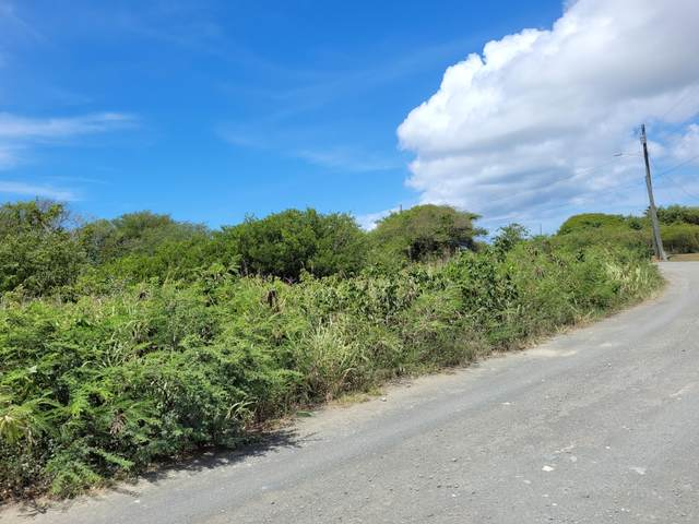 304 Enfield Green Pr, St. Croix, VI 00840 (MLS #21-1383) :: Hanley Team   Farchette & Hanley Real Estate