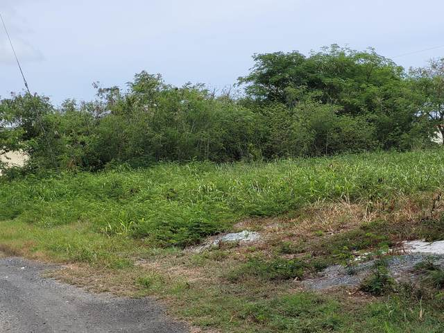 367 Enfield Green Pr, St. Croix, VI 00840 (MLS #21-1385) :: Hanley Team   Farchette & Hanley Real Estate