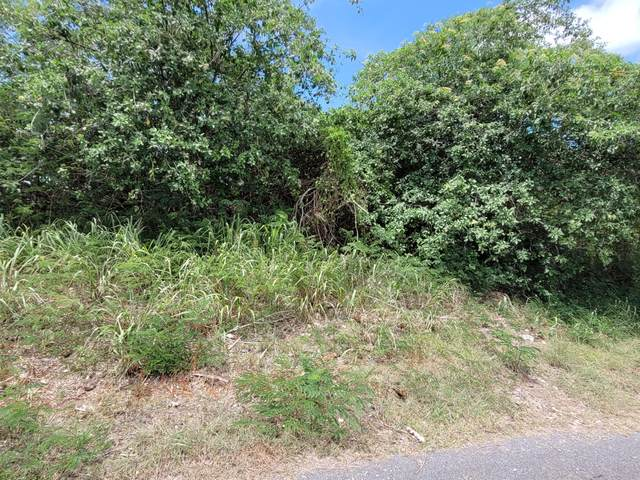 363 Enfield Green Pr, St. Croix, VI 00840 (MLS #21-1386) :: Hanley Team   Farchette & Hanley Real Estate