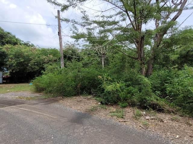356 Enfield Green Pr, St. Croix, VI 00840 (MLS #21-1387) :: Hanley Team   Farchette & Hanley Real Estate
