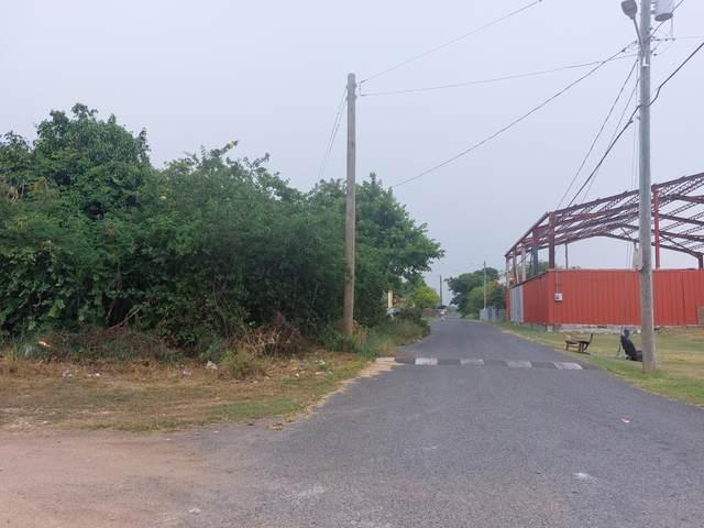 57 Concordia We, St. Croix, VI 00850 (MLS #21-1392) :: Hanley Team   Farchette & Hanley Real Estate