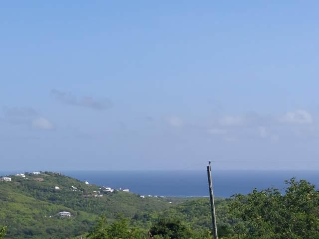 154 Morningstar Qu, St. Croix, VI 00820 (MLS #21-1396) :: The Boulger Team @ Calabash Real Estate