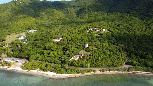 106-Rem Cane Bay Nb, St. Croix, VI 00820 (MLS #21-1397) :: The Boulger Team @ Calabash Real Estate