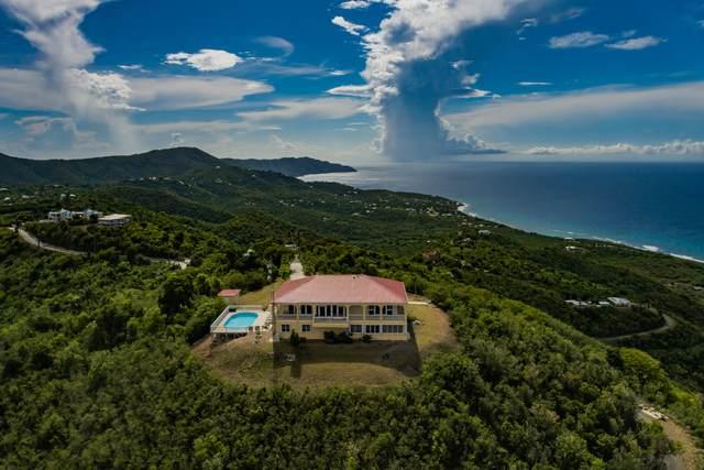 73,74,75 Clairmont Nb, St. Croix, VI 00840 (MLS #21-1406) :: Hanley Team | Farchette & Hanley Real Estate
