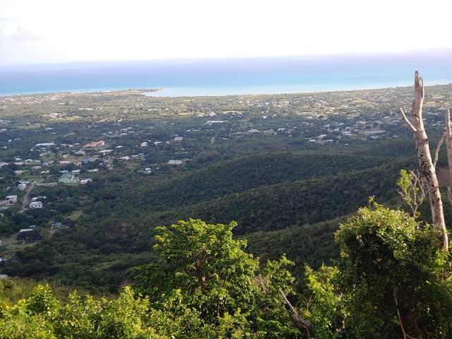 1-J et al Carlton We, St. Croix, VI 00840 (MLS #21-142) :: Hanley Team | Farchette & Hanley Real Estate