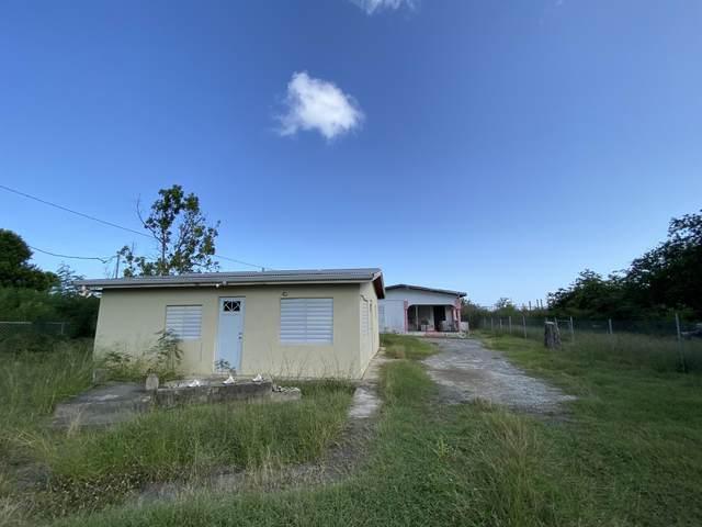 21-A Castle Coakley Qu, St. Croix, VI 00820 (MLS #21-1425) :: Hanley Team   Farchette & Hanley Real Estate