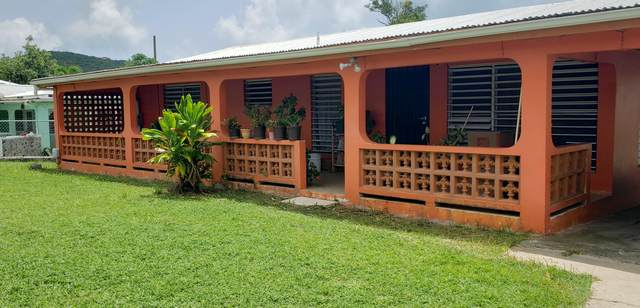 97 Catherine's Rest Co, St. Croix, VI 00820 (MLS #21-1428) :: Hanley Team | Farchette & Hanley Real Estate