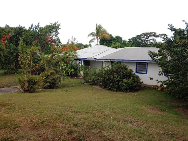 72 St. George Pr, St. Croix, VI 00840 (MLS #21-1432) :: The Boulger Team @ Calabash Real Estate