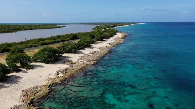 REM H & S Hessenlberg We, St. Croix, VI 00840 (MLS #21-1436) :: The Boulger Team @ Calabash Real Estate