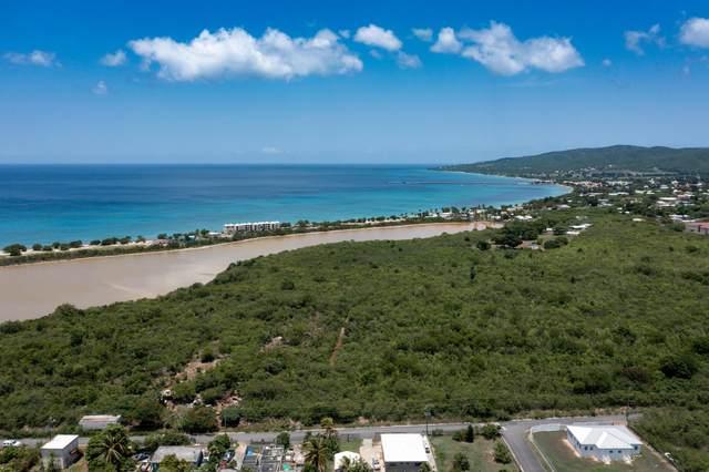 211 Hessenlberg We, St. Croix, VI 00840 (MLS #21-1437) :: The Boulger Team @ Calabash Real Estate