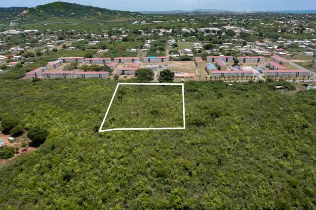 195-A Hessenlberg We, St. Croix, VI 00840 (MLS #21-1439) :: The Boulger Team @ Calabash Real Estate