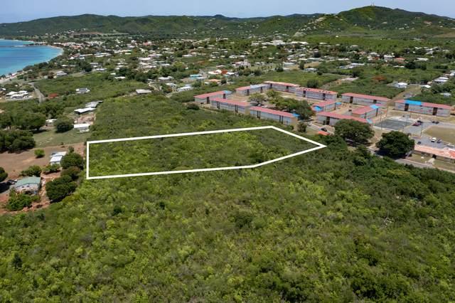 194 Hessenlberg We, St. Croix, VI 00840 (MLS #21-1440) :: The Boulger Team @ Calabash Real Estate