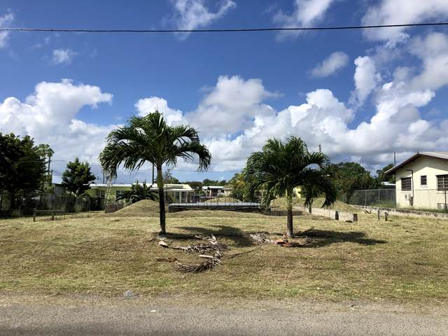 517 Strawberry Hill Qu, St. Croix, VI 00820 (MLS #21-145) :: Hanley Team | Farchette & Hanley Real Estate