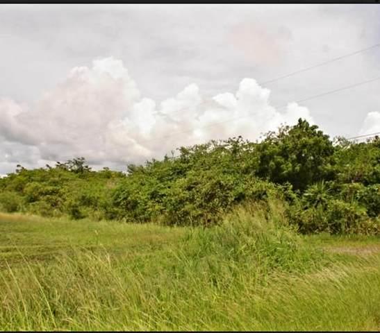 82 Carlton We, St. Croix, VI 00850 (MLS #21-146) :: Coldwell Banker Stout Realty