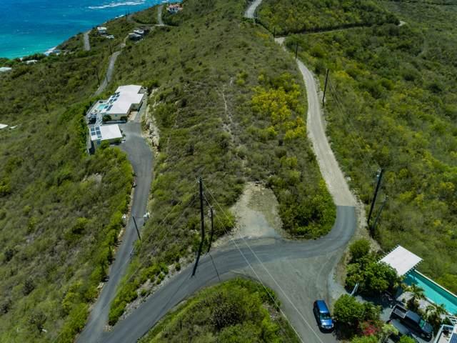 9 North Grapetree Eb, St. Croix, VI 00820 (MLS #21-1468) :: Hanley Team | Farchette & Hanley Real Estate