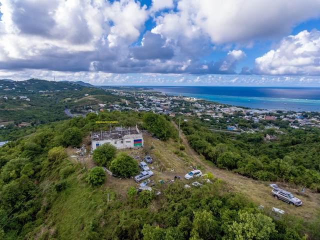 32 & 33 Contentment Co, St. Croix, VI 00820 (MLS #21-147) :: The Boulger Team @ Calabash Real Estate