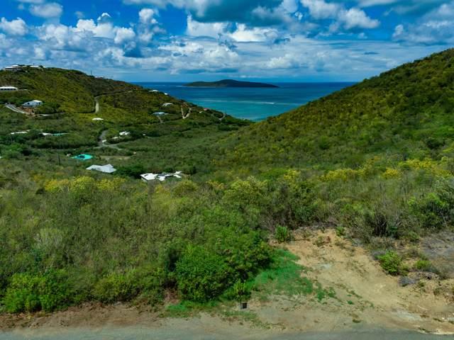 98 South Grapetree Eb, St. Croix, VI 00820 (MLS #21-1471) :: Hanley Team | Farchette & Hanley Real Estate