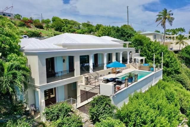 8-9 Nazareth Rh, St. Thomas, VI 00802 (MLS #21-1478) :: The Boulger Team @ Calabash Real Estate