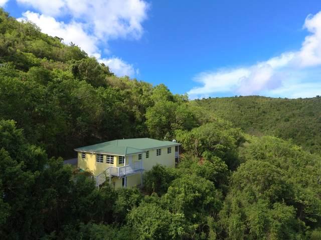 136-3 Mt. Welcome Ea, St. Croix, VI 00820 (MLS #21-1479) :: Hanley Team | Farchette & Hanley Real Estate