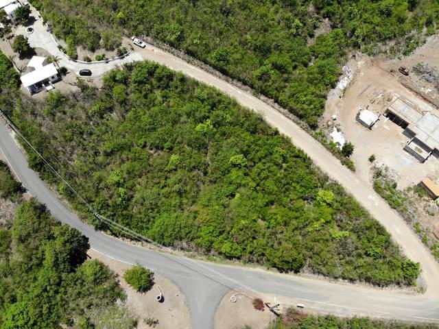 86 South Grapetree Eb, St. Croix, VI 00820 (MLS #21-1480) :: Hanley Team | Farchette & Hanley Real Estate