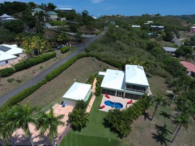 63&62-B Anna's Hope Ea, St. Croix, VI 00820 (MLS #21-1482) :: Hanley Team   Farchette & Hanley Real Estate