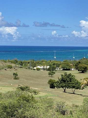 40 Catherine's Hope Eb, St. Croix, VI 00820 (MLS #21-1501) :: Hanley Team | Farchette & Hanley Real Estate