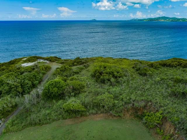 16A Judith's Fancy Qu, St. Croix, VI 00820 (MLS #21-1506) :: Hanley Team | Farchette & Hanley Real Estate