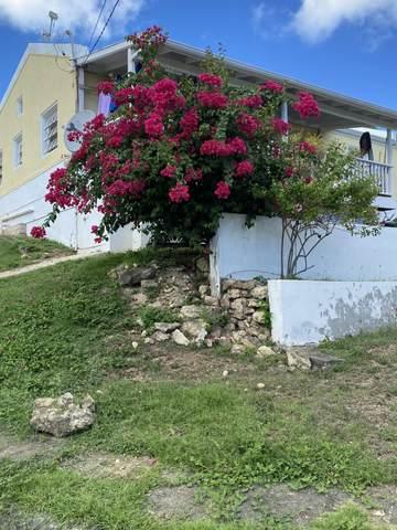 347 Barren Spot Qu, St. Croix, VI 00820 (MLS #21-1510) :: Hanley Team   Farchette & Hanley Real Estate