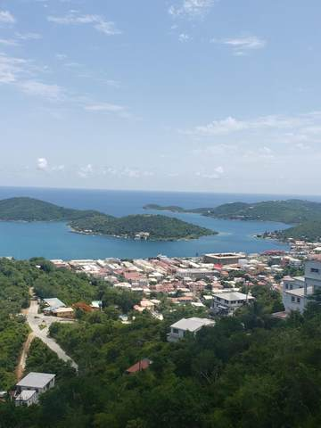3A Agnes Fancy Gns, St. Thomas, VI 00802 (MLS #21-1512) :: Coldwell Banker Stout Realty