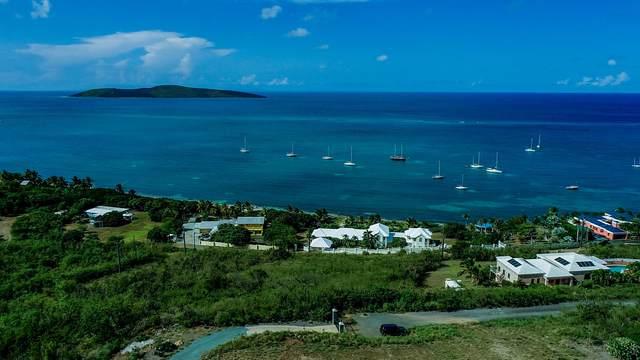 14F North Slob Eb, St. Croix, VI 00820 (MLS #21-1513) :: Hanley Team | Farchette & Hanley Real Estate