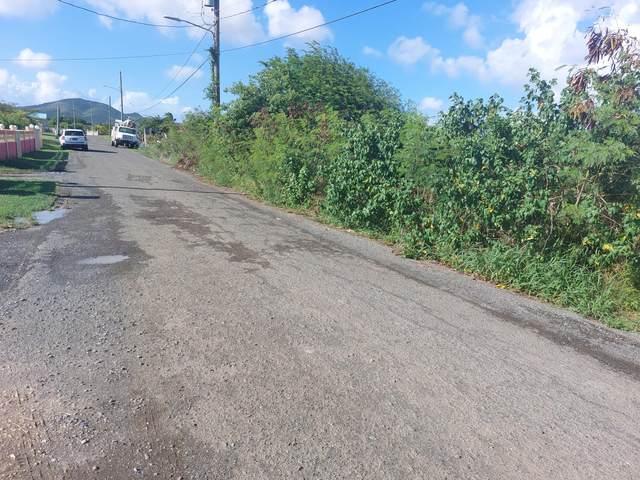 25 Cane We, St. Croix, VI 00840 (MLS #21-1529) :: The Boulger Team @ Calabash Real Estate