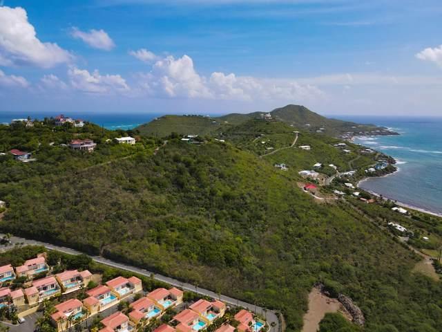 REM 5 Teagues Bay Eb, St. Croix, VI 00820 (MLS #21-1541) :: Hanley Team | Farchette & Hanley Real Estate