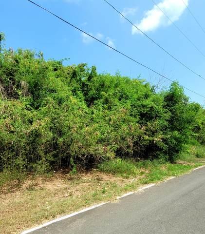 231 & 232 Barren Spot Ki, St. Croix, VI 00840 (MLS #21-1547) :: Hanley Team   Farchette & Hanley Real Estate