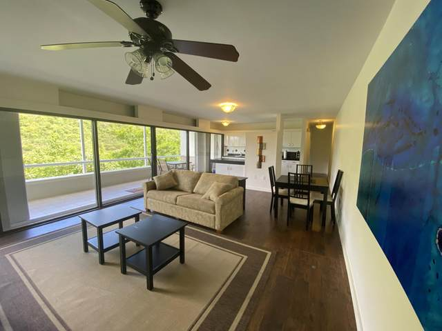 502L Lovenlund Gns, St. Thomas, VI 00802 (MLS #21-1550) :: Coldwell Banker Stout Realty