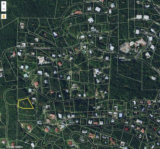 3CD-B St. Peter Lns, St. Thomas, VI 00802 (MLS #21-1573) :: Coldwell Banker Stout Realty