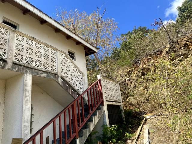 55-A Frederikshaab We, St. Croix, VI 00840 (MLS #21-1588) :: The Boulger Team @ Calabash Real Estate