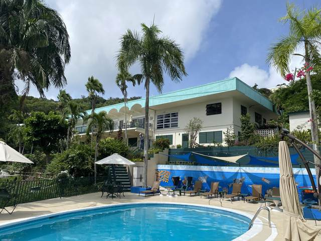 27 Elizabeth Gns, St. Thomas, VI 00802 (MLS #21-1593) :: Hanley Team   Farchette & Hanley Real Estate