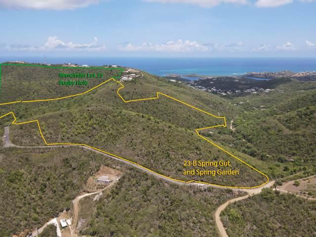 23B REM 33 Spring Garden Co, St. Croix, VI 00820 (MLS #21-1598) :: Hanley Team   Farchette & Hanley Real Estate