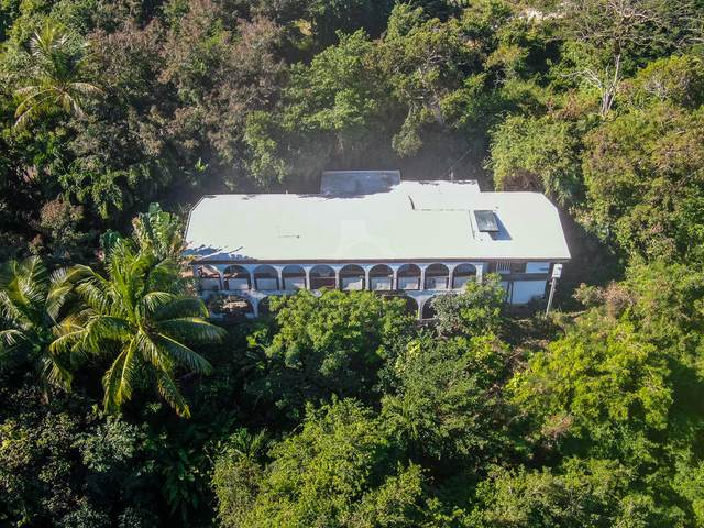 1-20 St. Joseph & Rosendahl Gns, St. Thomas, VI 00802 (MLS #21-160) :: The Boulger Team @ Calabash Real Estate