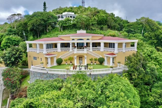 19A Solberg Lns, St. Thomas, VI 00802 (MLS #21-1605) :: Hanley Team   Farchette & Hanley Real Estate