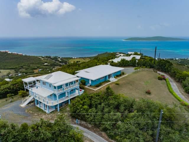 41 & 42 Cotton Valley Eb, St. Croix, VI 00820 (MLS #21-1606) :: The Boulger Team @ Calabash Real Estate